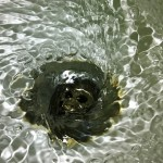 water-783355_640