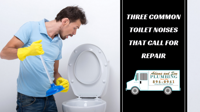 toilet sounds, hissing sound, gurgling sound, foghorn sound, plumbing services, plumber,