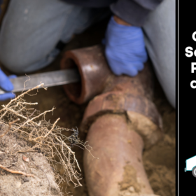 Common Sewer Line Problems and Their Causes